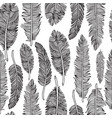 seamless pattern of feathers vector image