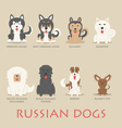 set russian dogs vector image vector image