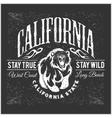 California Republic vintage typography with a vector image vector image
