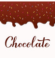 chocolate calligraphy hand lettering melted vector image vector image