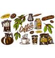 coffee in vintage style a bag grain cocoa vector image
