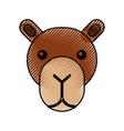 cute head camel cartoon animal icon vector image vector image
