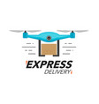 express delivery icon concept drone service vector image