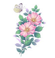 hand drawn dog-rose branch and butterfly vector image vector image