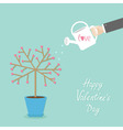 happy valentines day love card tree in pot vector image vector image