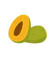 flat icon of half and whole papaya pawpaw vector image