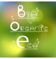 Green eco bio organic product vector image vector image