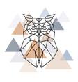 owl geometric head scandinavian style vector image vector image