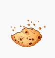 sweet choco chip cookies with chocolate dots vector image