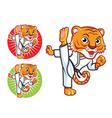 Karate Tiger vector image