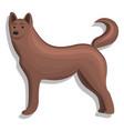home dog icon cartoon style vector image
