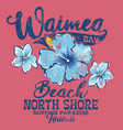 north shore waimea bay surfing paradise vector image vector image