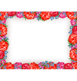 peony frame vector image vector image