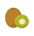 slice and whole kiwi tasty and healthy tropical vector image
