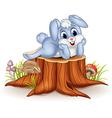 Cartoon bunny posing on tree stump vector image vector image