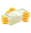 Pack of the money and coins vector image