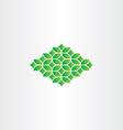 spring green pattern design element vector image