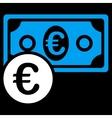 Euro Cash Money Icon vector image