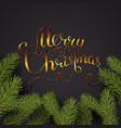 holiday lettering background merry vector image vector image