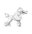 mixture animals poodle dog with crocodile head vector image