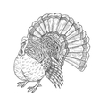 Thanksgiving turkey sketch isolated icon vector image vector image