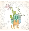 Invitation card of cactus in pots vector image