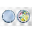 antibiotics test with before after effect vector image vector image
