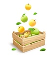apple fruits falling vector image vector image