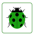 Ladybug realistic cartoon icon vector image vector image
