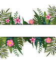 summer trendy tropical leaves and flowers design vector image vector image
