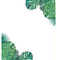 tropic leaves with sunshine tropic background vector image vector image