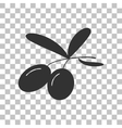 Olives sign Dark gray icon on vector image vector image