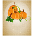 Pumpkins on a beige background vector image vector image