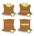 sacks with natural food vector image vector image