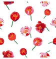 Seamless floral background Isolated red flowers vector image vector image