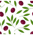 seamless pattern with black olives vector image