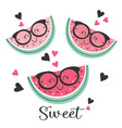 set isolated funny watermelon with glasses vector image