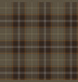 tartan plaid seamless pattern background vector image vector image