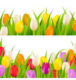 tulip border set vector image vector image
