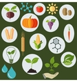 Agronomic icons flat style vector image vector image