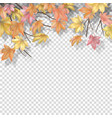 autumn border with maple leaves