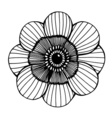 flower 209 04 vector image vector image