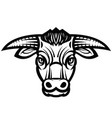 head of powerful horned bull vector image vector image