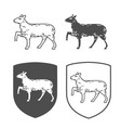 heraldic shields with lamb vector image vector image