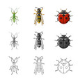 insect and fly sign vector image vector image