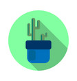 round cactus icon flat vector image