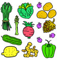 vegetable object set of doodles vector image