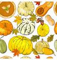 autumn seamless pattern with pumpkins pumpkin vector image