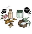 organic hand drawn oils almond oils coconut vector image vector image