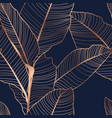 tropical jungle banana leaf pattern vector image vector image